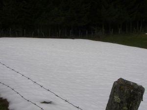 Nieve constante en el Camino