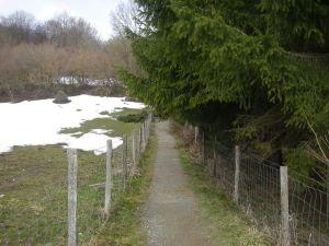 Buena parte de esta etapa y la del día siguiente transcurre por sendas en los interiores de fincas o bosques.