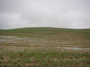 Camino al Monte del Perdón