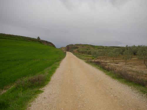 Camino a los Arcos