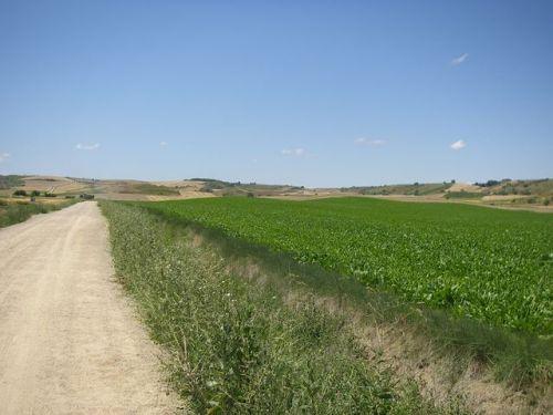 Camino a Santo Domingo de la Calzada