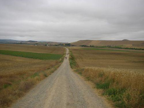 Camino de Santo Domingo de la Calzada a Belorado
