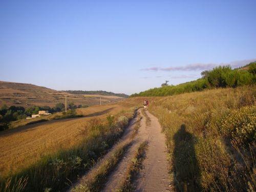 Caminando hacia Castrojeriz