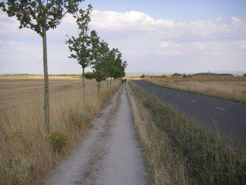 Camino de El Burgo Ranero a Mansilla de las Mulas