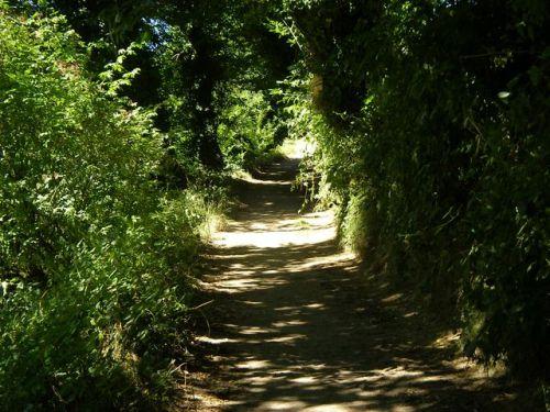 Camino a Samos