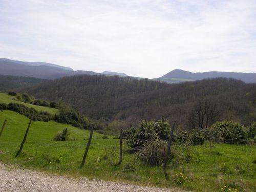 Etapa Roncesvalles a Zubiri