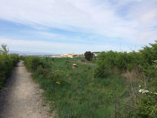 Camino a Logroño
