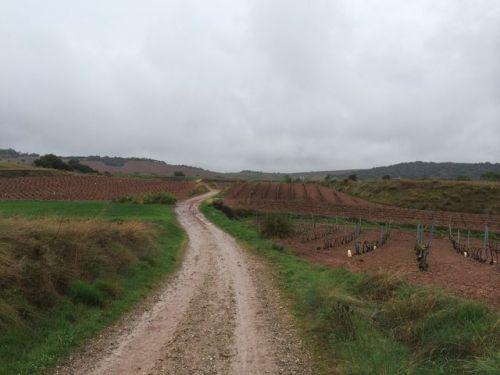 Camino a Nájera.