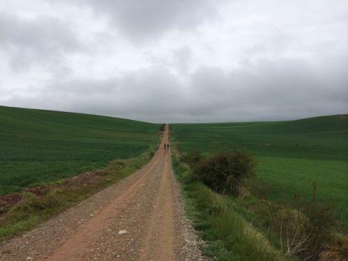 Camino a Santo Domingo de la Calzada.