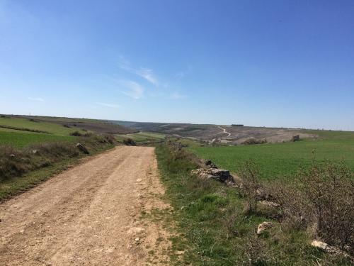 Camino de Burgos a Hontanas