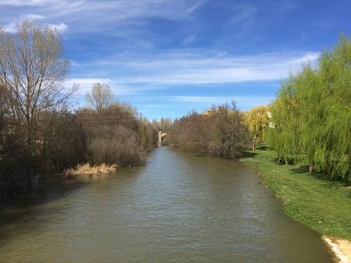 Carrióin de los Condes.Río Carrión
