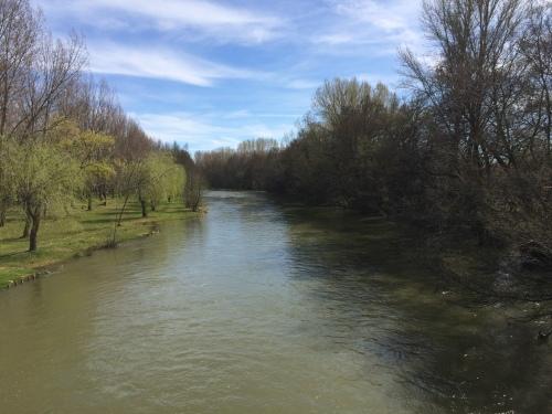 Carrión de los Condes. Río Carrión
