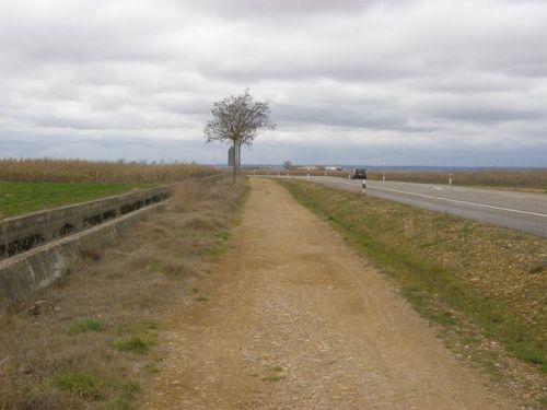 Camino a Hospital de Órbigo