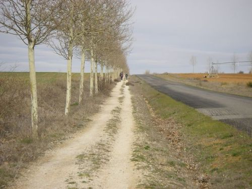 Camino a Mansilla de las Mulas