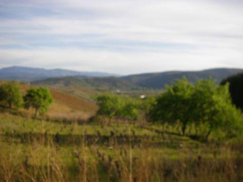 De Molinase a Villafranca del BIerzo